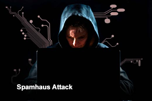 3、Spamhaus攻击 Radware 2013 Cyber Attacks 04.jpg